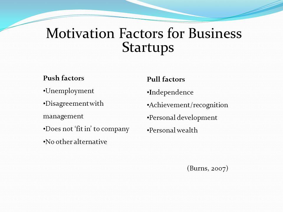 Motivation Factors for Business Startups