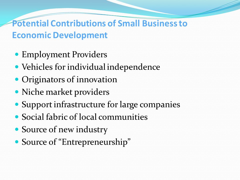 Potential Contributions of Small Business to Economic Development