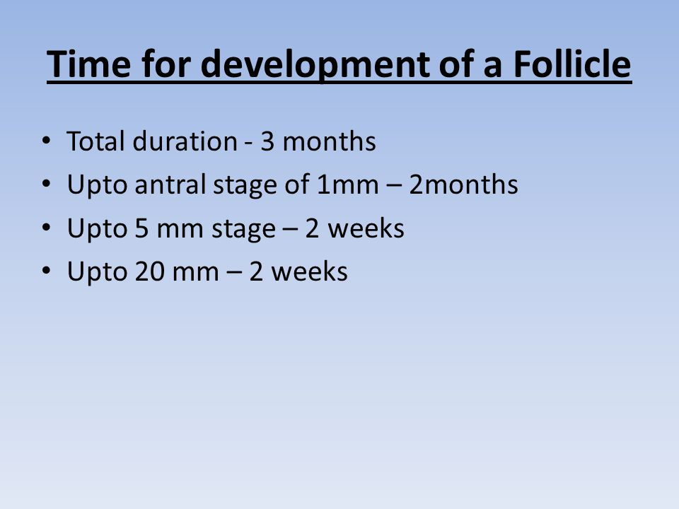 Time for development of a Follicle