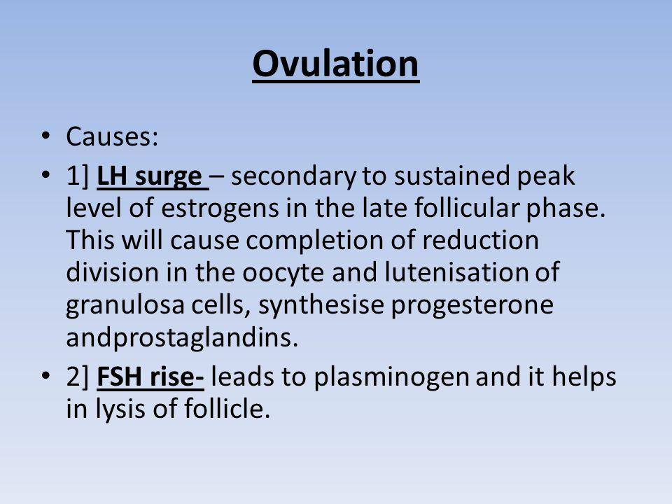 Ovulation Causes: