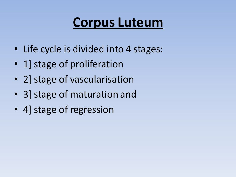 Corpus Luteum Life cycle is divided into 4 stages: