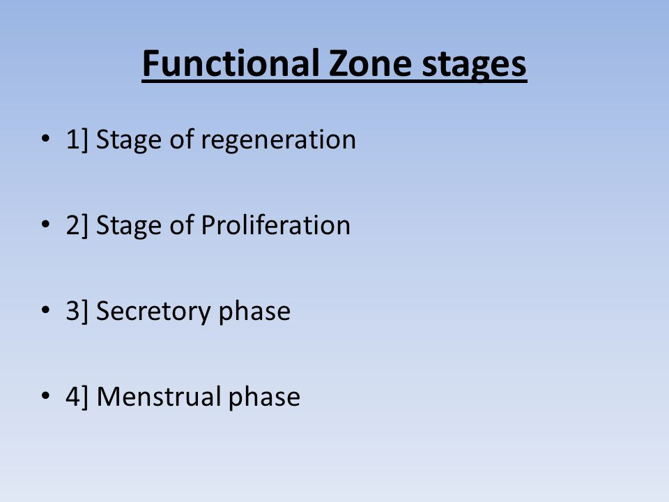 Functional Zone stages