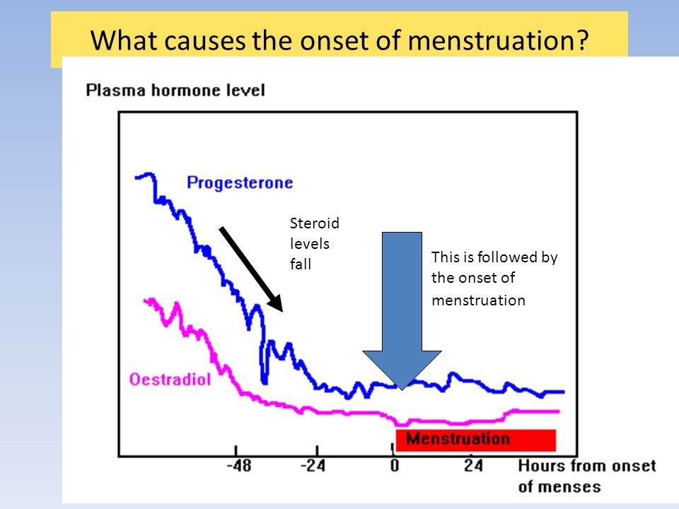 What causes the onset of menstruation