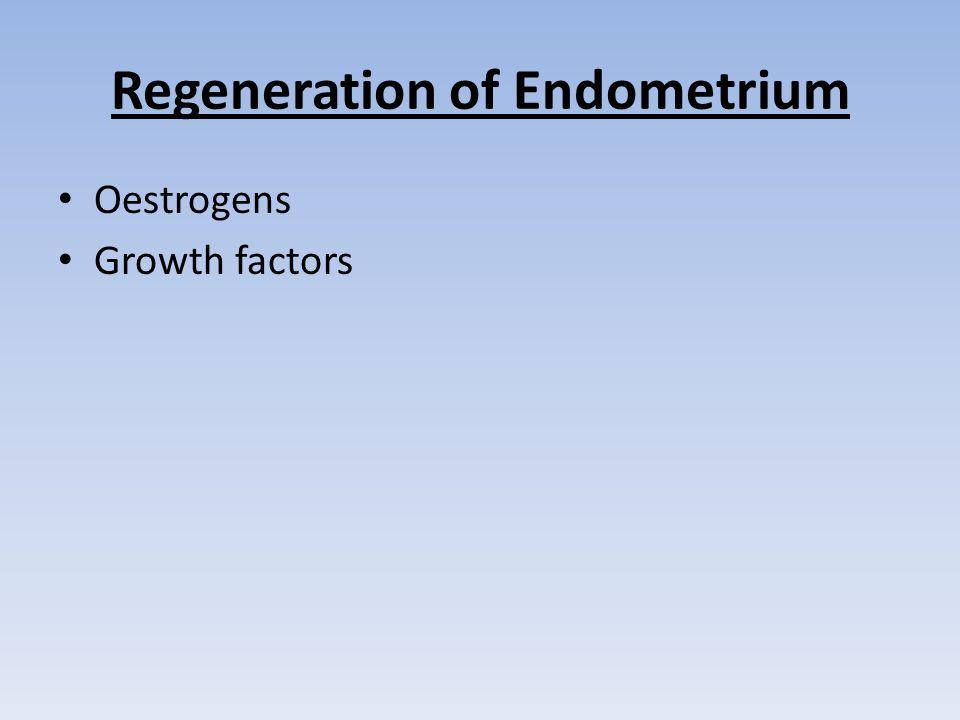 Regeneration of Endometrium