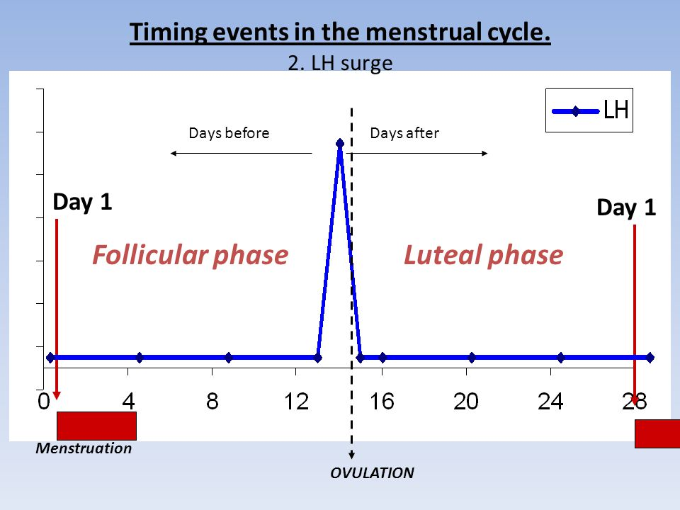 Timing events in the menstrual cycle. 2. LH surge