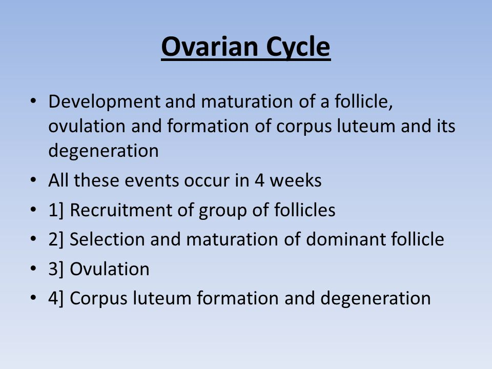 Ovarian Cycle Development and maturation of a follicle, ovulation and formation of corpus luteum and its degeneration.