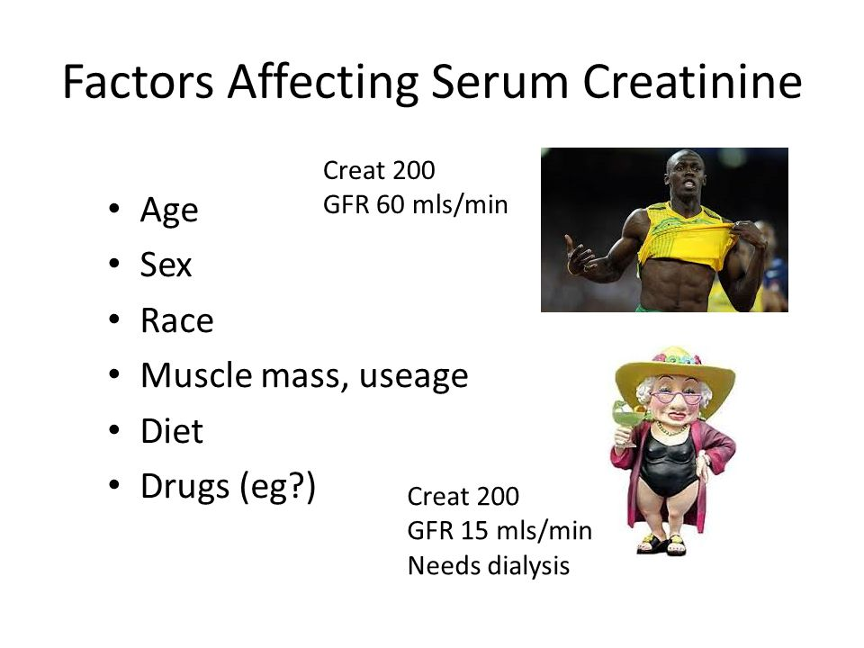 Factors Affecting Serum Creatinine
