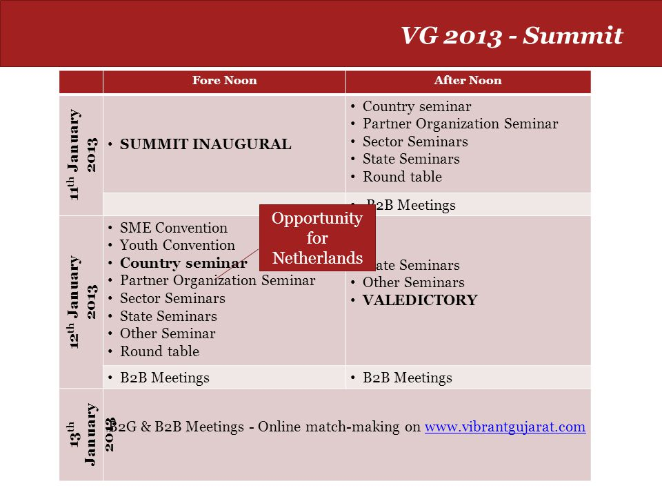 VG 2013 - Summit Opportunity for Netherlands 11th January 2013