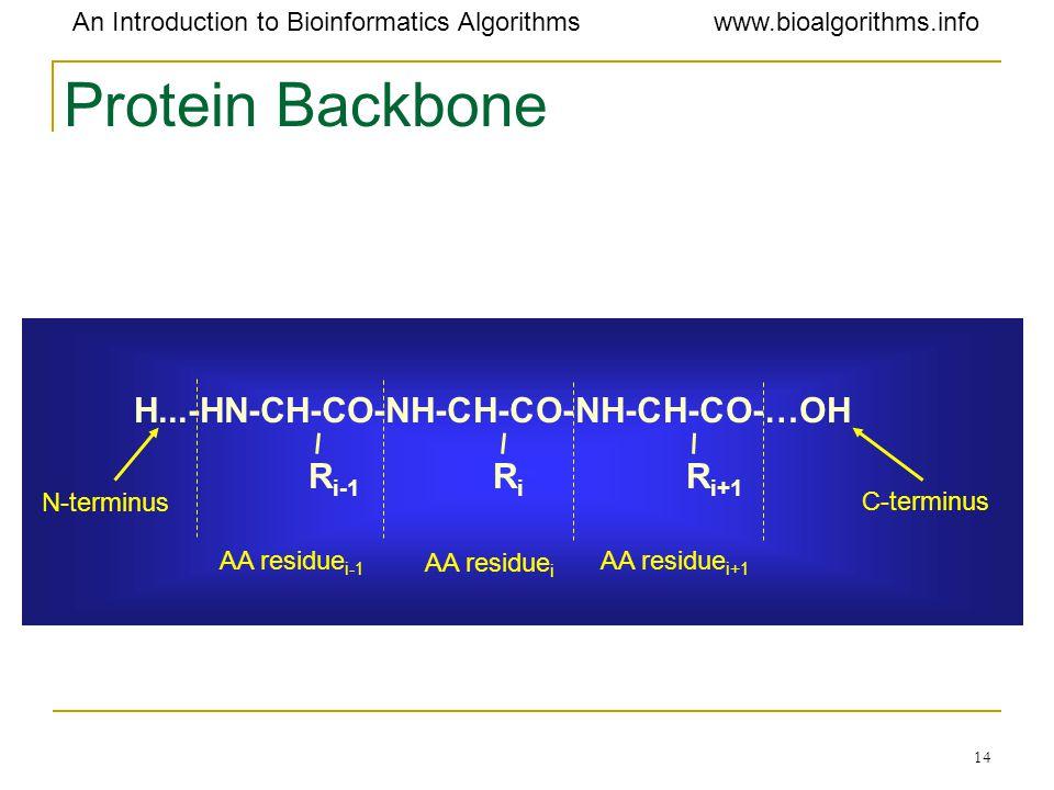 Protein Backbone H...-HN-CH-CO-NH-CH-CO-NH-CH-CO-…OH Ri-1 Ri Ri+1