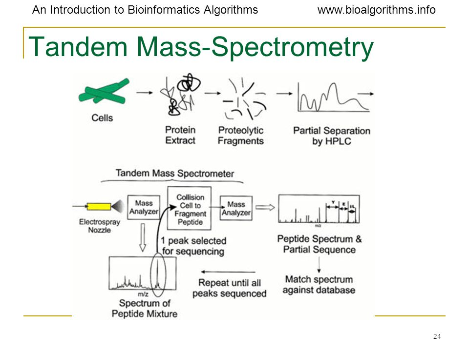 Tandem Mass-Spectrometry