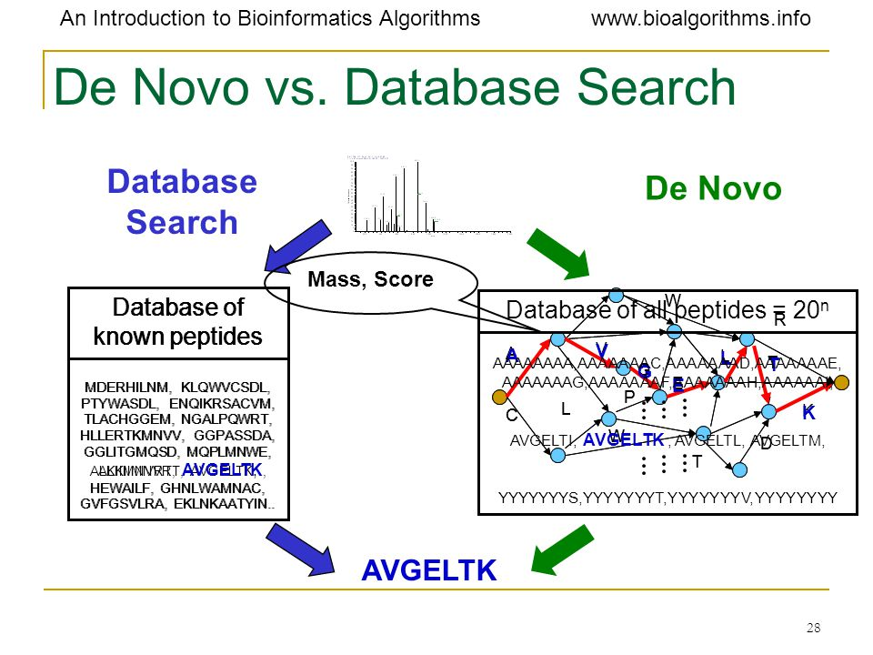 De Novo vs. Database Search