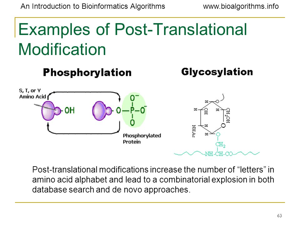 Examples of Post-Translational Modification