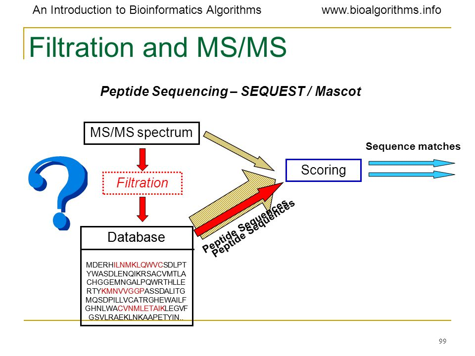 Filtration and MS/MS Peptide Sequencing – SEQUEST / Mascot