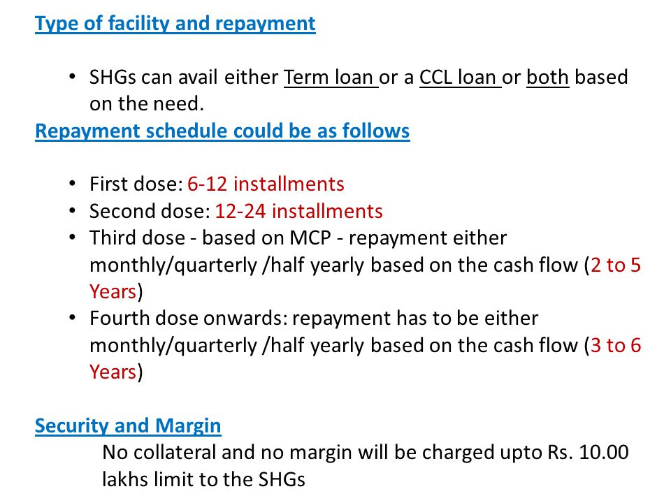 Type of facility and repayment