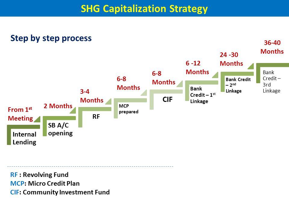 SHG Capitalization Strategy