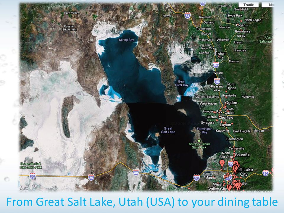 From Great Salt Lake, Utah (USA) to your dining table