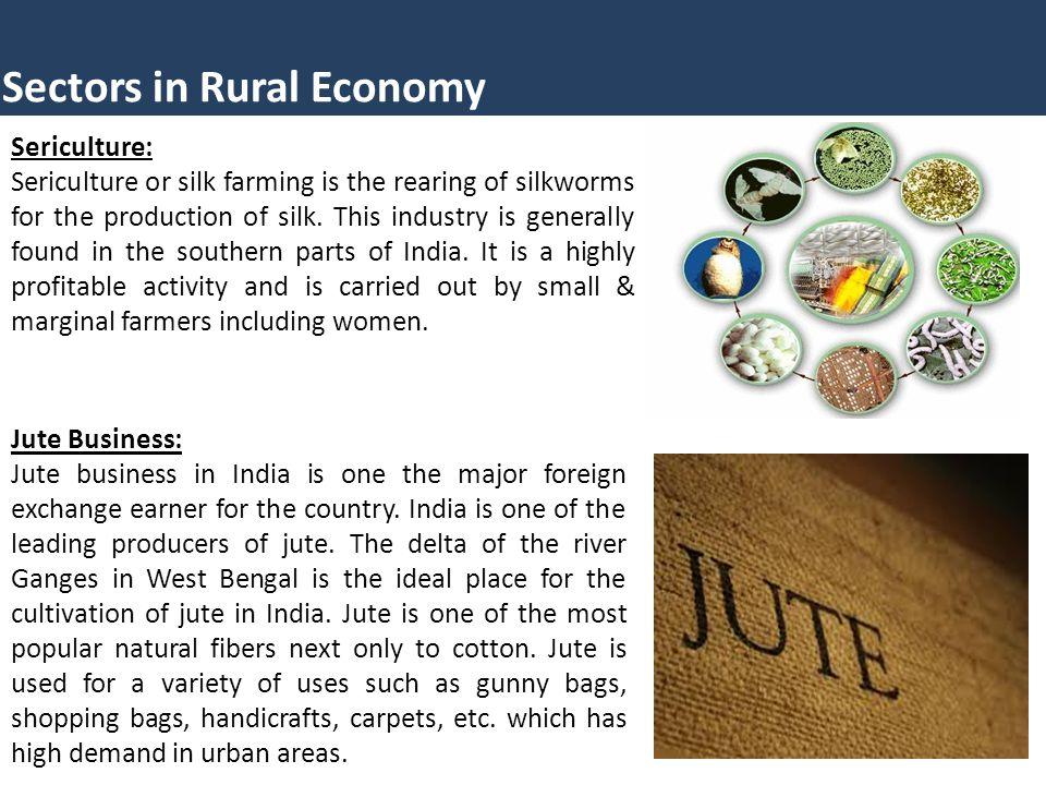 Sectors in Rural Economy