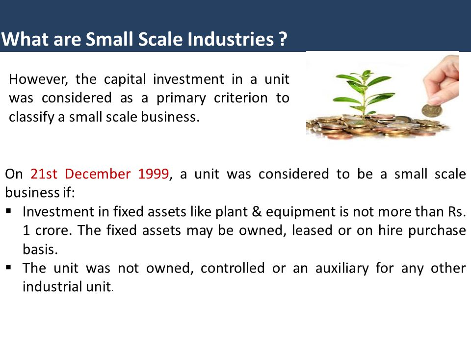 What are Small Scale Industries