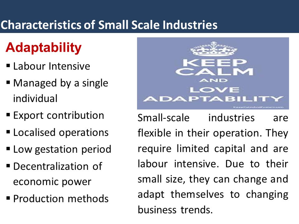 Characteristics of Small Scale Industries