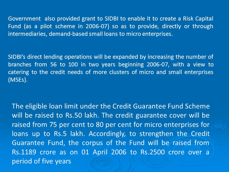 Government also provided grant to SIDBI to enable it to create a Risk Capital Fund (as a pilot scheme in 2006-07) so as to provide, directly or through intermediaries, demand-based small loans to micro enterprises.