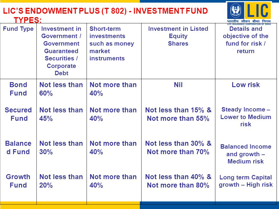 LIC'S ENDOWMENT PLUS (T 802) - INVESTMENT FUND TYPES: