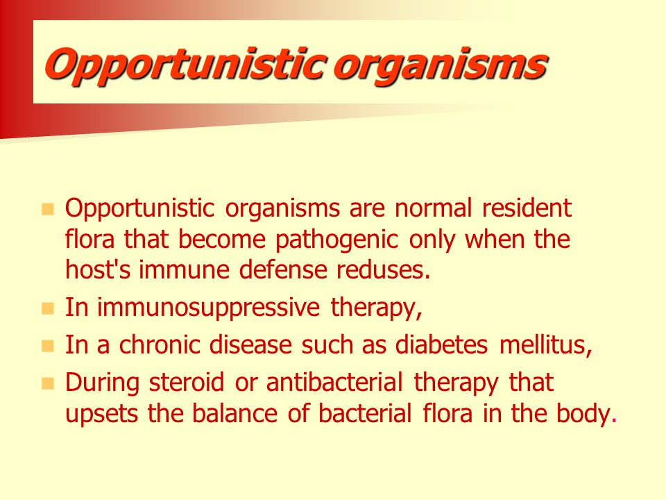 Opportunistic organisms