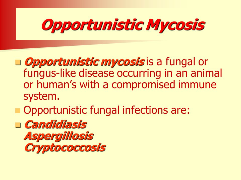 Opportunistic Mycosis