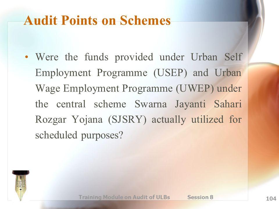 Audit Points on Schemes