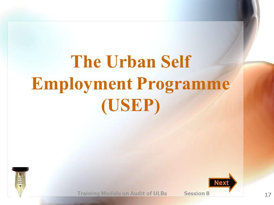 The Urban Self Employment Programme (USEP)