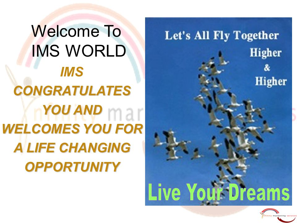 Welcome To IMS WORLD Live Your Dreams IMS CONGRATULATES YOU AND