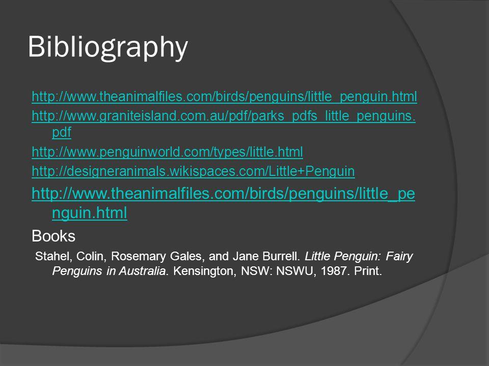 Bibliography http://www.theanimalfiles.com/birds/penguins/little_penguin.html. http://www.graniteisland.com.au/pdf/parks_pdfs_little_penguins.pdf.
