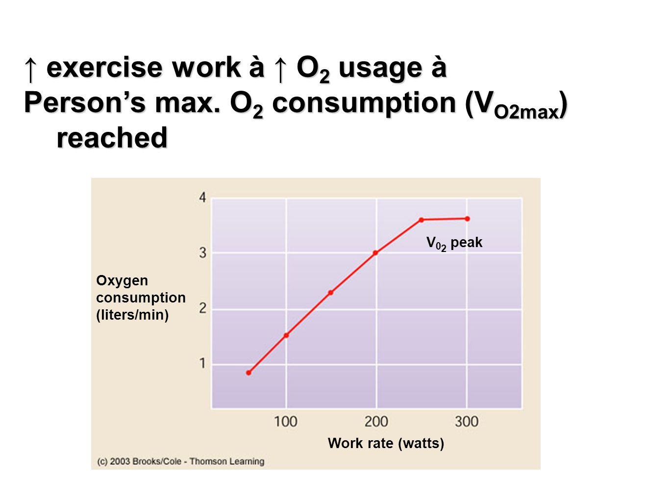 ↑ exercise work à ↑ O2 usage à Person's max