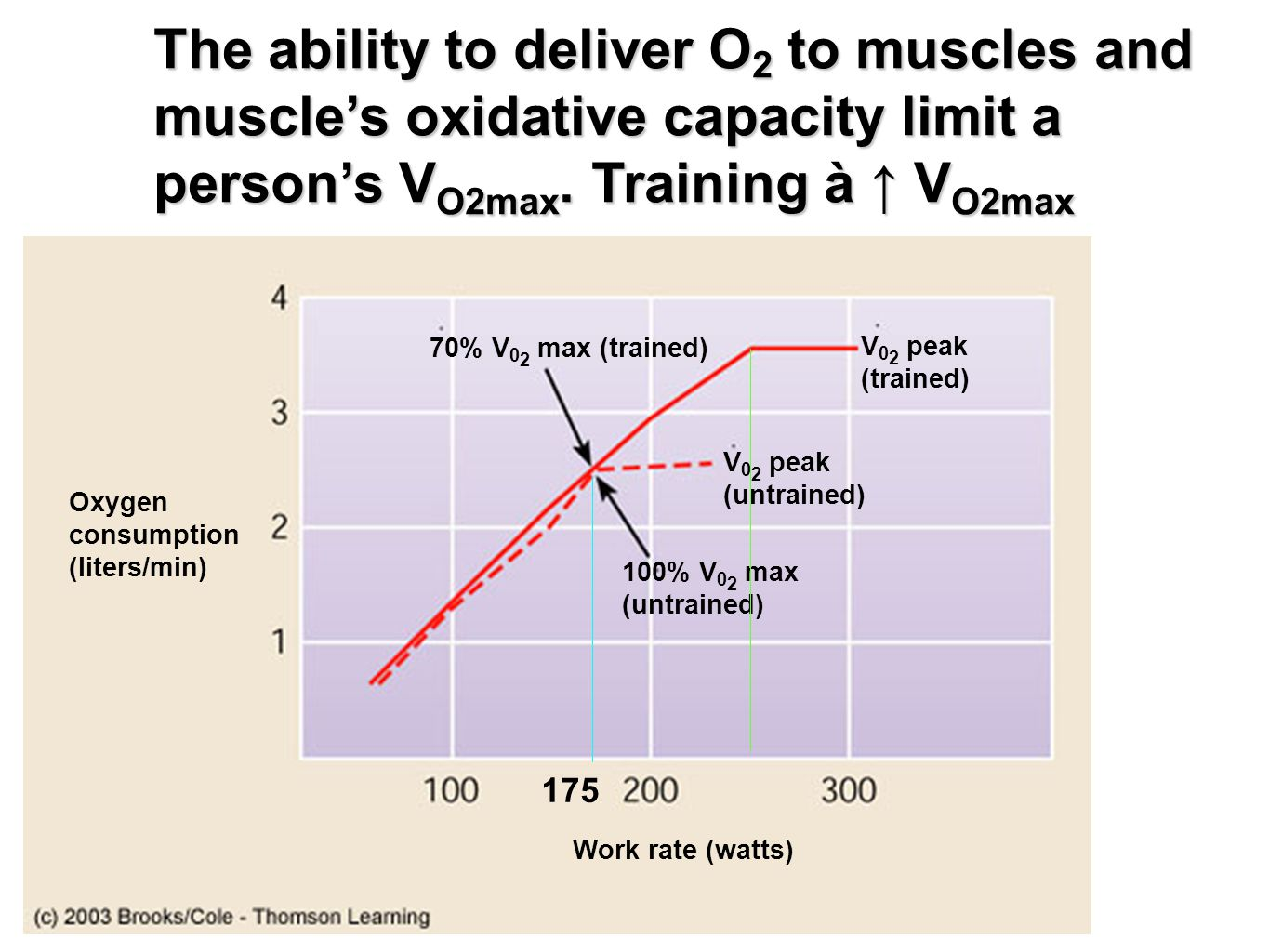 The ability to deliver O2 to muscles and muscle's oxidative capacity limit a person's VO2max. Training à ↑ VO2max