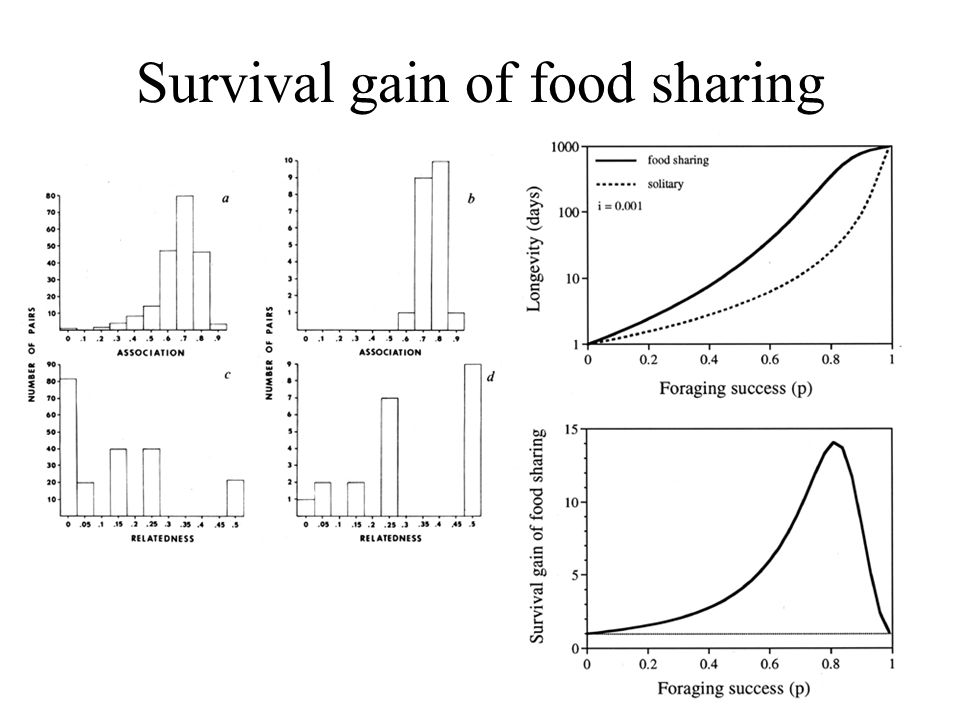 Survival gain of food sharing