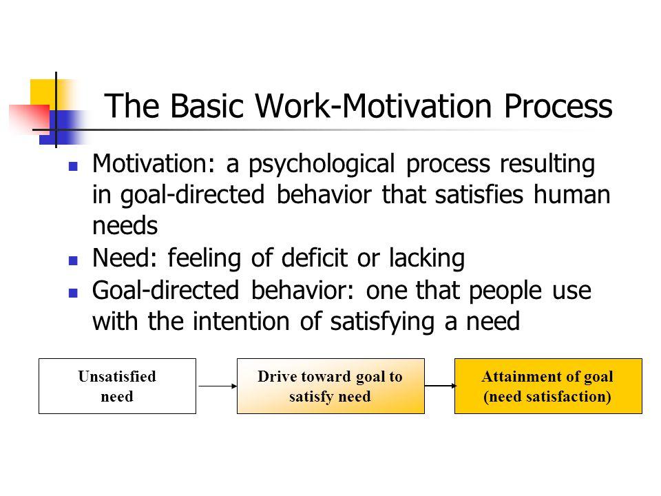 The Basic Work-Motivation Process