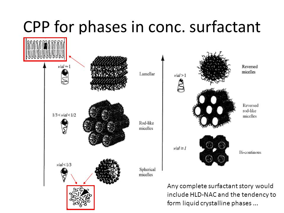 CPP for phases in conc. surfactant