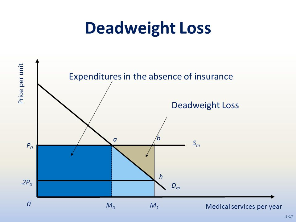 Deadweight Loss Expenditures in the absence of insurance