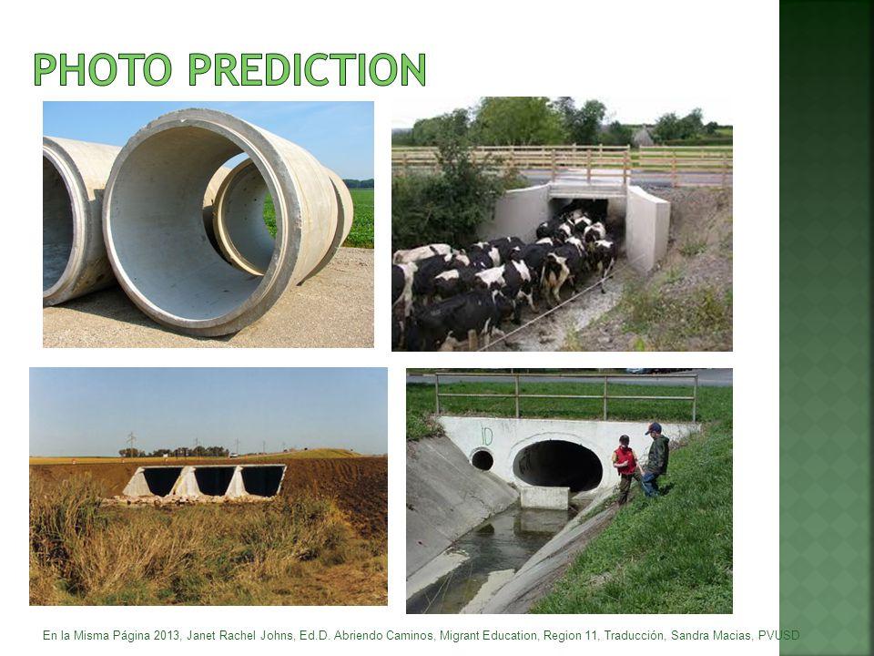 PHOTO PREDICTION En la Misma Página 2013, Janet Rachel Johns, Ed.D.
