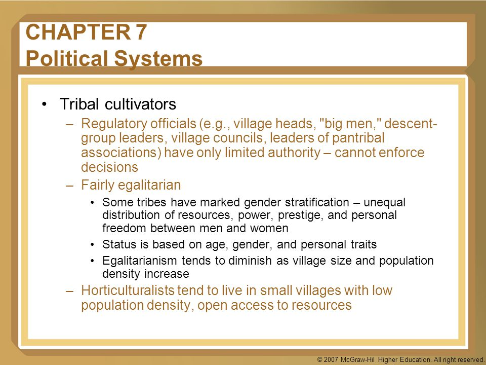 CHAPTER 7 Political Systems