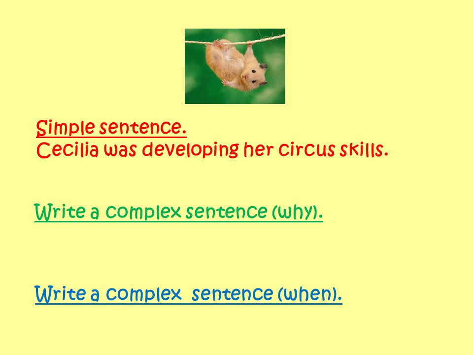 Simple sentence. Cecilia was developing her circus skills.