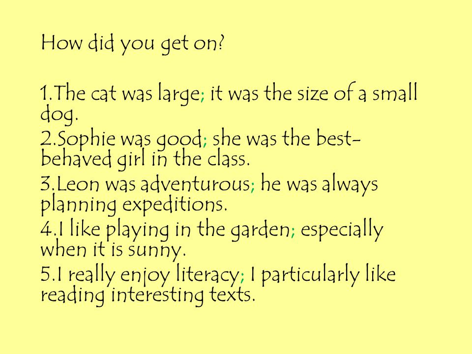 How did you get on 1.The cat was large; it was the size of a small dog. 2.Sophie was good; she was the best-behaved girl in the class.