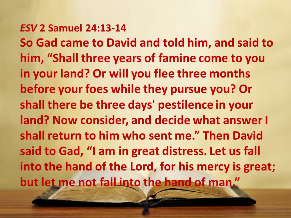 ESV 2 Samuel 24:13-14