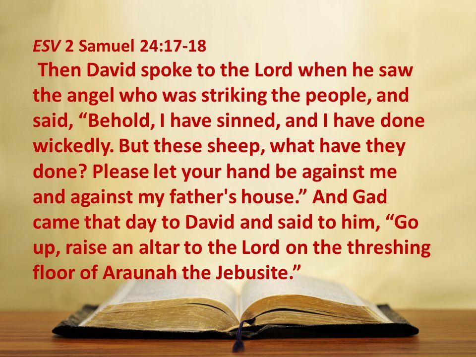 ESV 2 Samuel 24:17-18