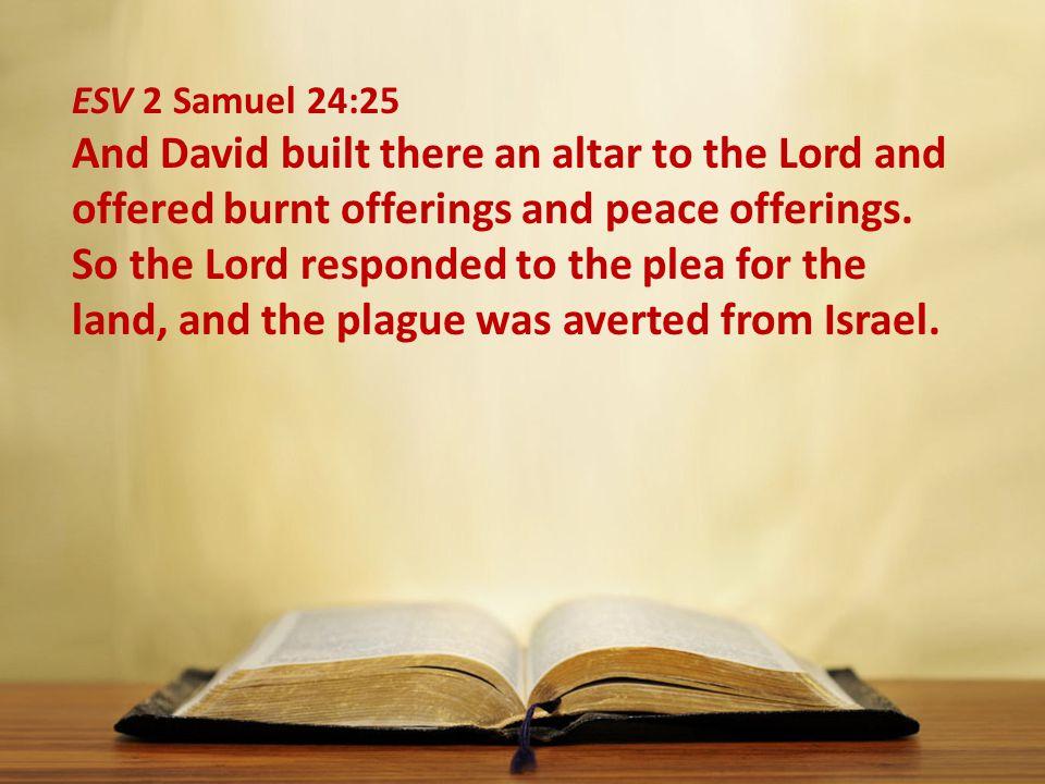 ESV 2 Samuel 24:25