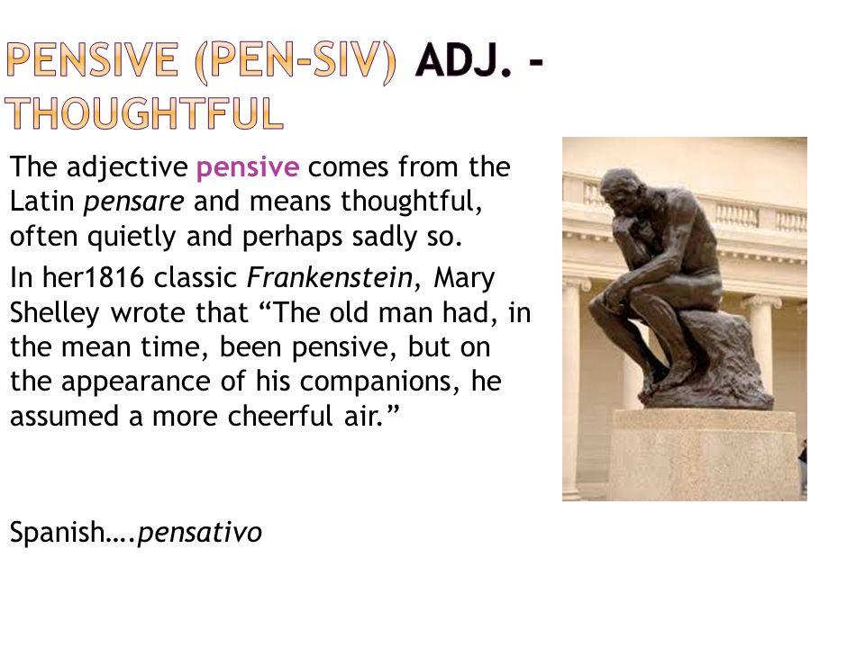 pensive (PEN-siv) adj. - thoughtful