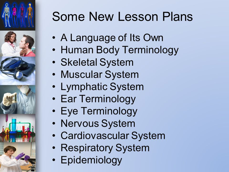 Some New Lesson Plans A Language of Its Own Human Body Terminology