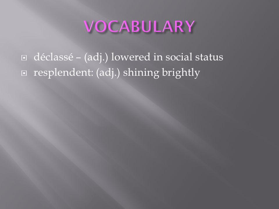 VOCABULARY déclassé – (adj.) lowered in social status
