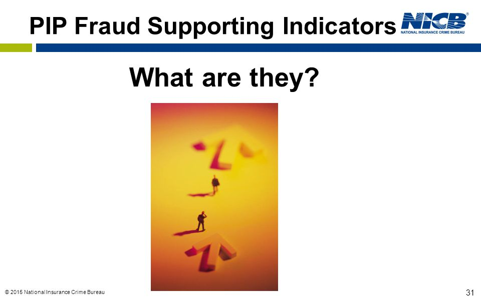 PIP Fraud Supporting Indicators