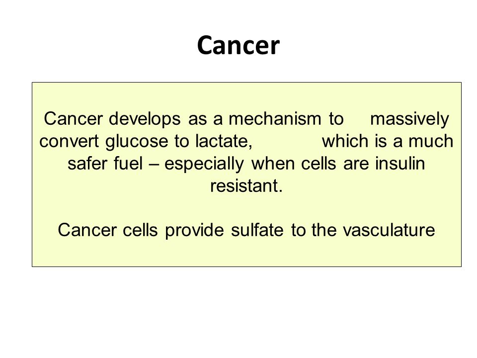 Cancer cells provide sulfate to the vasculature