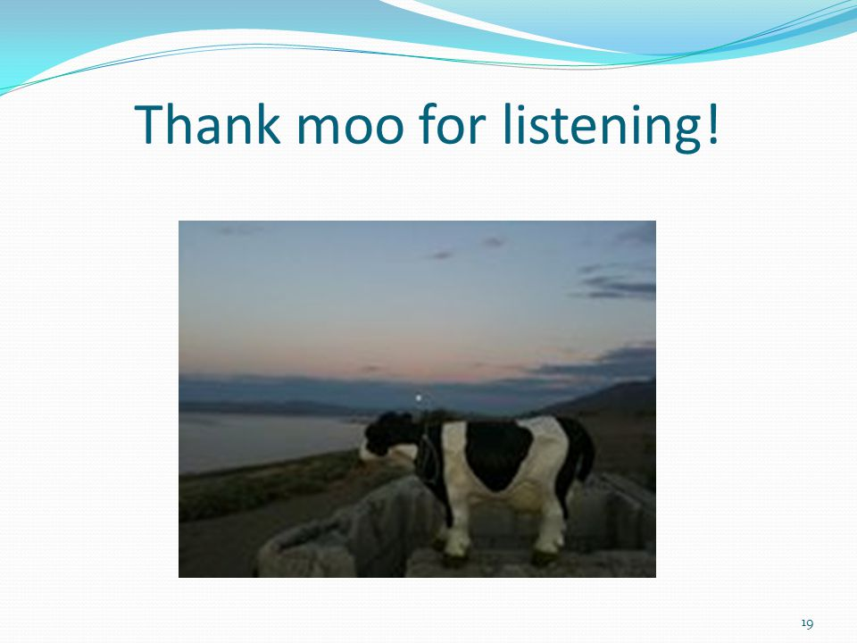 Thank moo for listening!